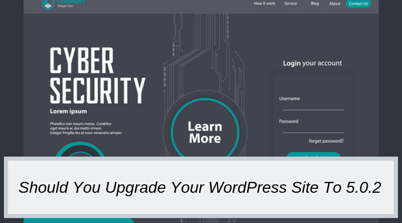 Should You Upgrade Your WordPress Site To 5.0.2